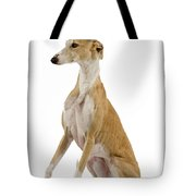 Spanish Galgo Tote Bag