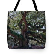 Spanish Moss Draped Limbs Tote Bag