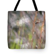 Sparkling Morning Sunshine With Dragonfly Tote Bag