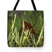 Sparkly Raindrops Tote Bag