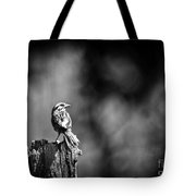 Sparrow In Black And White Tote Bag