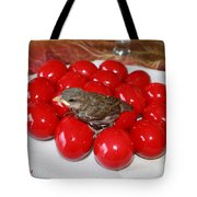 Sparrow On Red Eggs Tote Bag