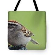 Sparrow Snack Tote Bag