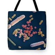 Species Of Bacteria Tote Bag