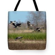 Speckled Belly Geese Landing Tote Bag