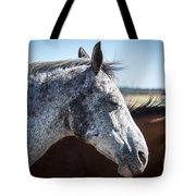 Speckled Gray Tote Bag