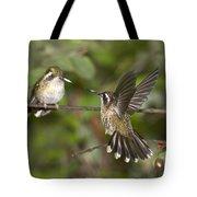 Speckled Hummingbirds Tote Bag
