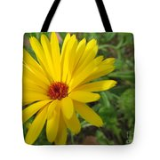 Speckless Yellow African Daisy Tote Bag