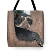 Spectacled Bear In Andean Foothills Peru Tote Bag