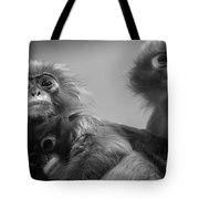 Spectacled Langur Family Tote Bag