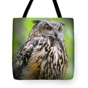 Spectacled Owl  Tote Bag