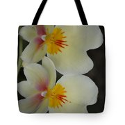 Speechless Beauty Tote Bag