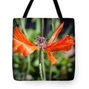Spent Poppy Tote Bag