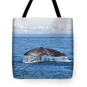 Sperm Whale Tail  Physeter Catodon Tote Bag