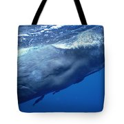 Sperm Whale With Remoras Dominica Tote Bag