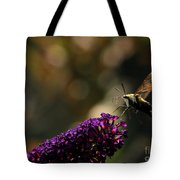 Sphinx Moth On Butterfly Bush Tote Bag