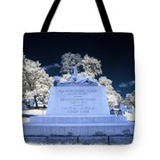 Sphinx Profile Near Infrared Blue And White Tote Bag
