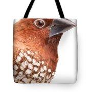 Spice Finch Lonchura Punctulata Portrait Tote Bag