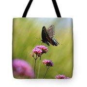 Spicebush Swallowtail Butterfly In Meadow Tote Bag