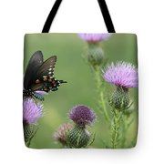 Spicebush Swallowtail Butterfly On Bull Thistle Wildflowers Tote Bag