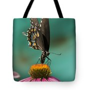 Spicebush Swallowtail Butterfly - Papilio Troilus Tote Bag