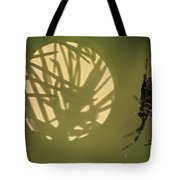 Spider And Sunlight Tote Bag
