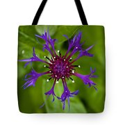 Spider Burst Tote Bag