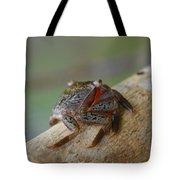Spider Crab Tote Bag