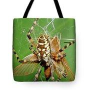Spider Eating Moth Tote Bag