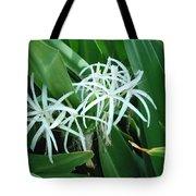 Spider Flower In Sint Maarten Tote Bag