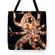 Spider - Hairy Tote Bag