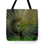 Spider In Web 3 Tote Bag