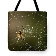 Spider In Web 5 Tote Bag