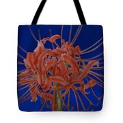 Spider Lily #1 Tote Bag