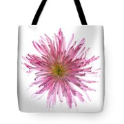 Spider Mum Flower Against White Tote Bag