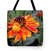 Spider On Helenium Tote Bag