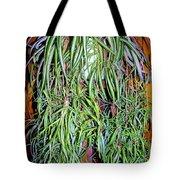 Spider Plant Tote Bag