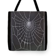 Spider Web With Frost Tote Bag