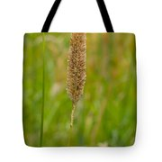 Spider's Grass Staircase Tote Bag