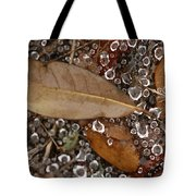 Spiderweb And Raindrops Tote Bag