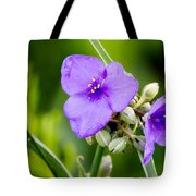 Spiderworts Tote Bag
