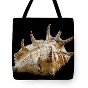 Spikes Back Side Tote Bag by Jean Noren