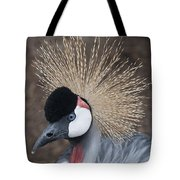 Spikey Feathers-closeup Tote Bag
