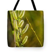 Spiky Green Plant Tote Bag