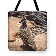 Spinifex Pigeon V3 Tote Bag