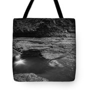Spinning Leaves Bw Tote Bag
