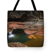 Spinning Leaves  Tote Bag