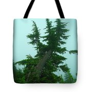 Spinning Up In A Twist Tote Bag