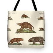 Spiny Animals Tote Bag
