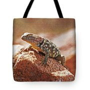 Spiny Swift Looks Over Its Domain Tote Bag